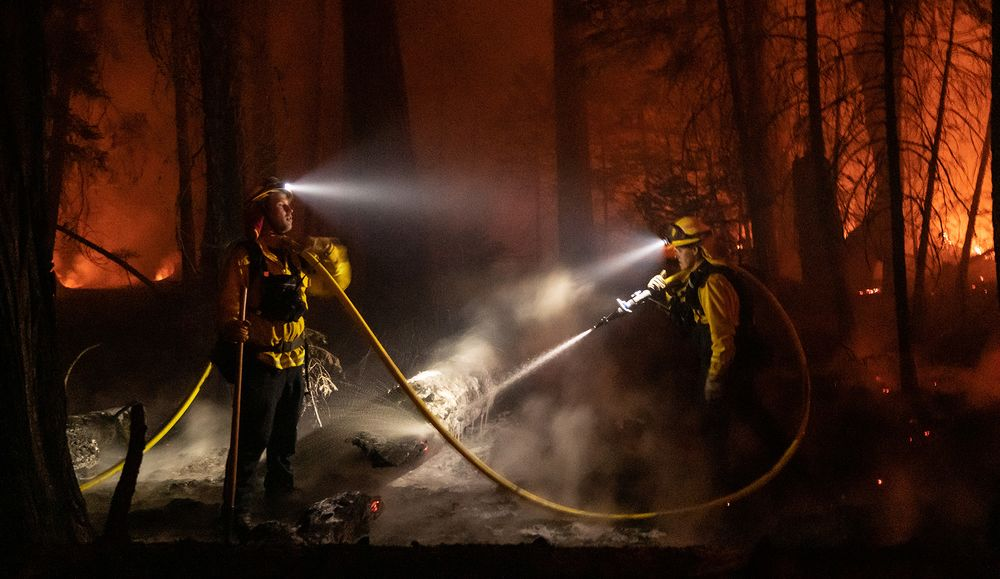 firefighters in wildfire